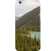 Spirit Lake from Emmons Moraine Overlook iPhone Case/Skin