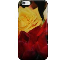 Richness of Color iPhone Case/Skin