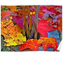 """""""Dance of Autumn"""" Poster"""