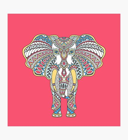 Doodle with decorated Indian Elephant Photographic Print