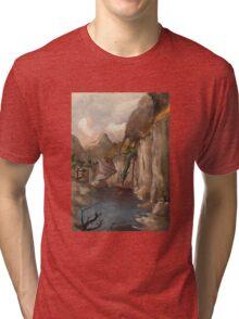 Dragon Fight Tri-blend T-Shirt