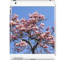 ash-837 iPad Case/Skin