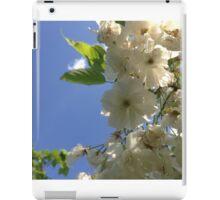 ash-838 iPad Case/Skin