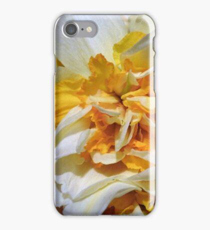 Double headed daffodil iPhone Case/Skin