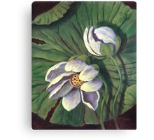 Waterlily Like A Clock Canvas Print