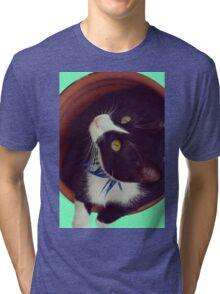 Eyes cat panzon green bicolor feline Tri-blend T-Shirt