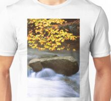STREAM,AUTUMN Unisex T-Shirt