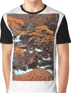 MIDDLE PRONG LITTLE RIVER,AUTUMN Graphic T-Shirt