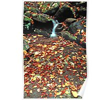 STREAM,AUTUMN Poster