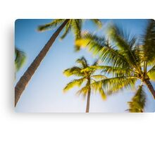 Tropical Hawaiian Palm Paradise Canvas Print