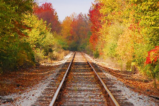 Fading Tracks by Mary Carol Story