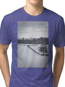 The Color of Winter BW Tri-blend T-Shirt