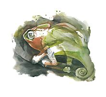 Chameleon, watercolor Photographic Print