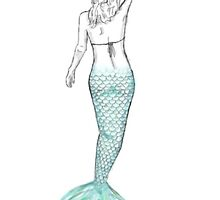 Mermaid Drawing by johnsmoustache