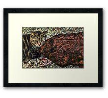 Don't Tell the Kittens Framed Print