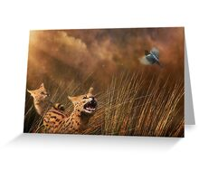 Servals Greeting Card