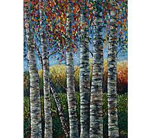 Rocky Mountain High (Palette Knife) by Lena Owens/OLena Art Photographic Print