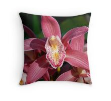 Pink Cymbidium Throw Pillow