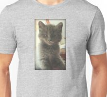 Sweet Fluffy Grey Kitten Unisex T-Shirt