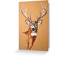 White-tailed Deer Buck by Dennis Dalton Greeting Card