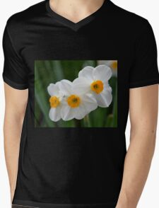 Three Miniature Daffodils Mens V-Neck T-Shirt