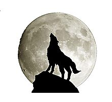Wolf under the moon by remi42 Photographic Print