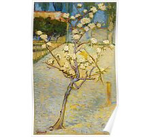 1888-Vincent van Gogh-Small pear tree in blossom-46x73 Poster