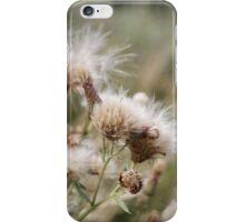 Cirsium arvense is a species of Cirsium flowers iPhone Case/Skin