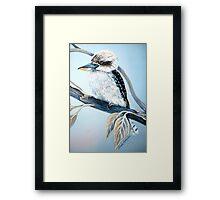 Cool Kookaburra Framed Print