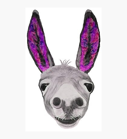 Funny donkey (pink/purple) Photographic Print