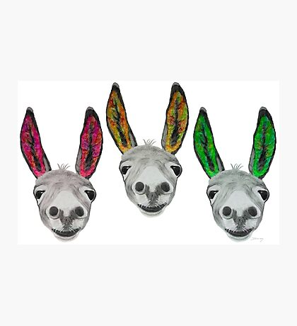 Funny donkeys (version 1) Photographic Print