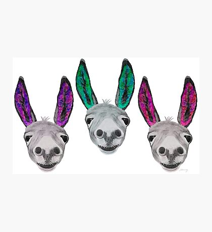 Funny donkeys (version 2) Photographic Print