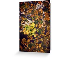 Golden Leaves Greeting Card