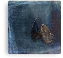Touch of a Feather Metal Print