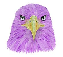 Special Eagle (purple) Photographic Print