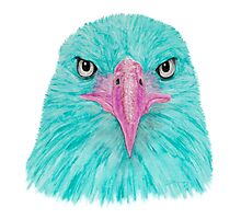 Special Eagle (turquoise) Photographic Print