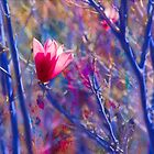 Pink and Blue by Marilyn Cornwell
