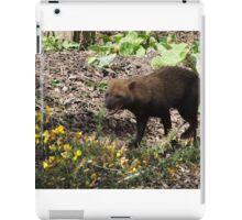 Smilin' Jack (Bush Dog) iPad Case/Skin