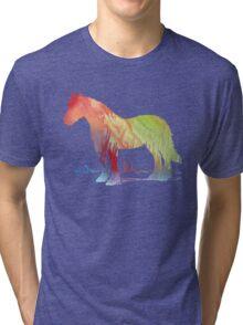 Horse portrait Tri-blend T-Shirt