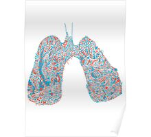 Lungs Poster