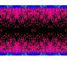 Abstract design _pink edition Photographic Print