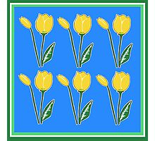 Yellow Tulips with Blue Pattern Photographic Print