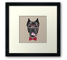 Hipster dog Cane Corso  Framed Print