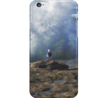 No Fear ~ Seagull Watching The Waves ~ Sunset Cliffs, California ~ USA iPhone Case/Skin