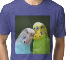 Budgie Buddies Tri-blend T-Shirt
