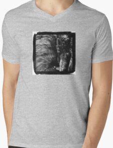 Gazing Beyond   Mens V-Neck T-Shirt