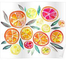 oranges, grapefruit , lemon Poster