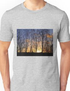 Winter Sun Through Spindly Trees Unisex T-Shirt