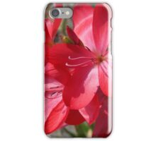 Pink Flowers in May iPhone Case/Skin