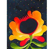 Orange-yellow folk flower Photographic Print
